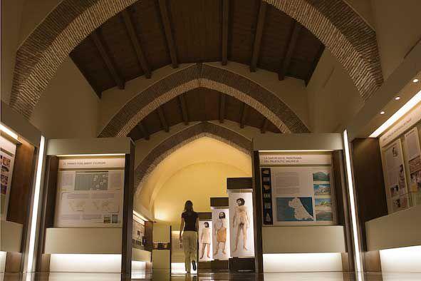Hospital de Sant Marc, Museu Arqueològic de Gandia. Foto: Natxo Francés.